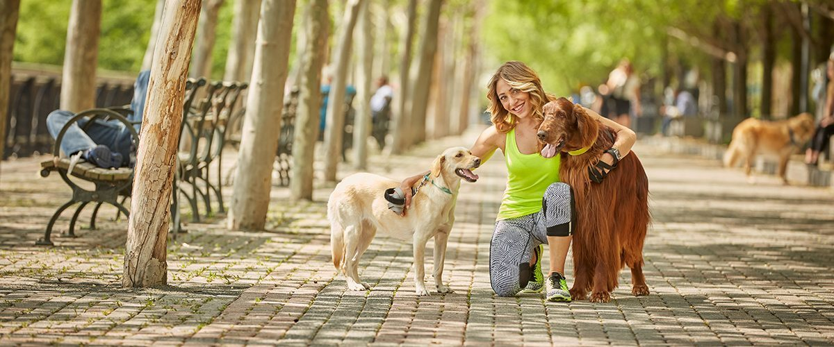 Portrait of Jessica Chipkin Klein in a park with two dogs