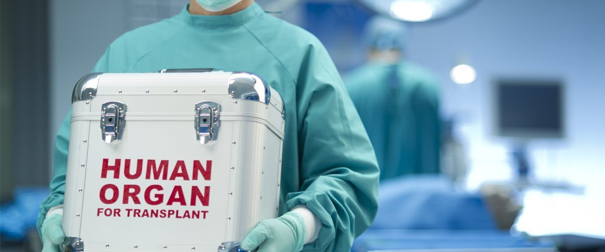 A medical container with a human organ inside being transported