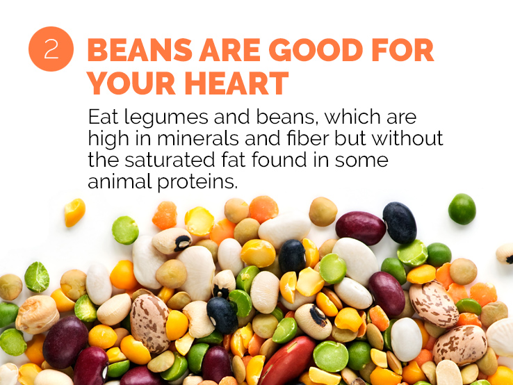 Text underscoring the importance of beans and legumes