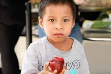Boy eating an apple at the mobile food market