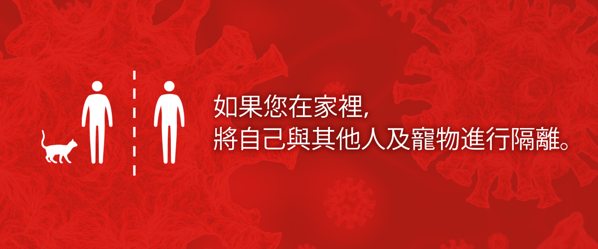 Slideshow explaining in Chinese what to do if you think you've been exposed to coronavirus.