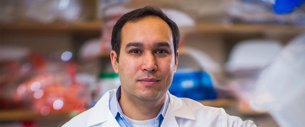 Dr. Adam Bass precision medicine